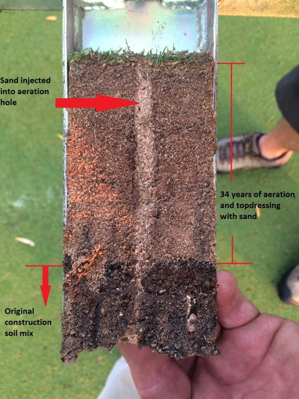 dryject profile text